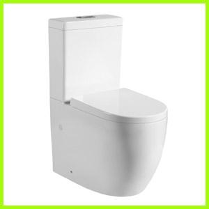 Tornado Flush Toilet